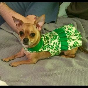 DOG CLOTHES St Patty's Day Dress XXS